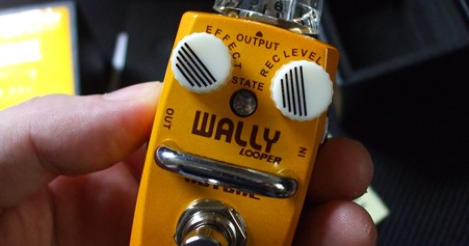 Wally+ Looper pedal